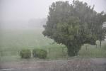 Starkregen mit starkem Hagelschlag
