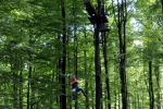 Großer Tarzansprung
